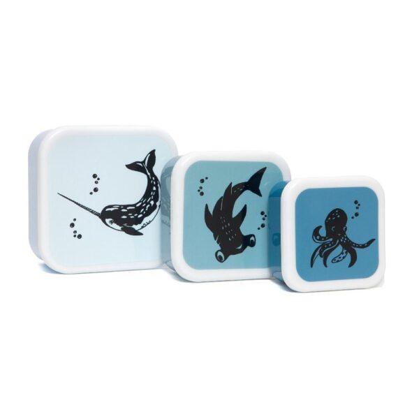 Petit Monkey – Lunchbox set van 3 Sea animals